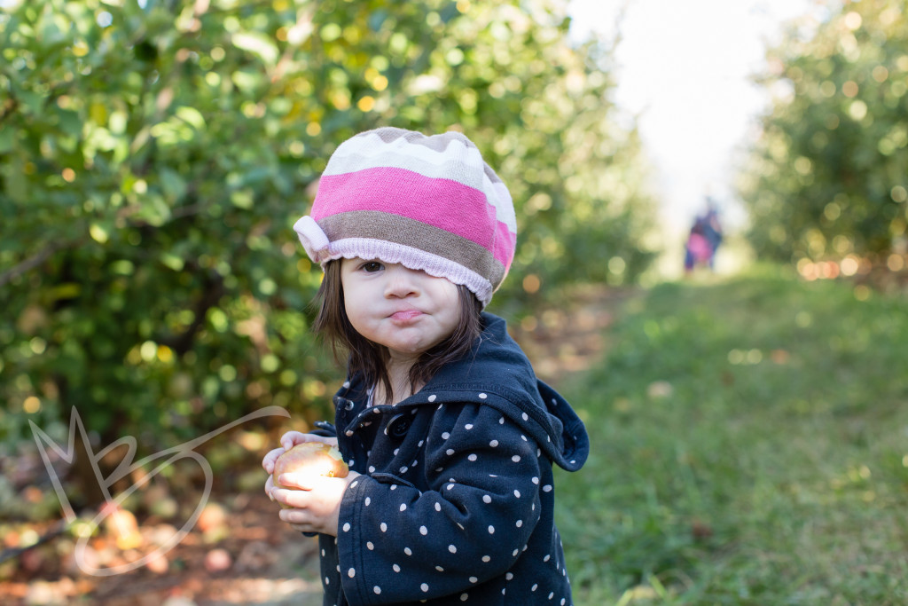 carters mountain orchard (7 of 1)